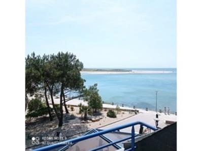 Location Appartement 2 pièces - 4 personnes - Superbe vue mer, à 50 m de la plage